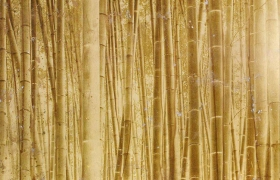 images/fabrics/ALEX TURCO/built-interiors/wall-panels/Bamboo/1