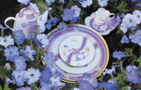 images/fabrics/HAVILAND/crockery/sets/9/1