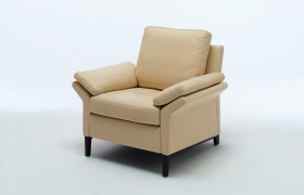 images/fabrics/ROLF BENZ/softmebel/chair/3300/1