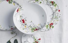 images/fabrics/ROSENTHAL/crockery/sets/7/1